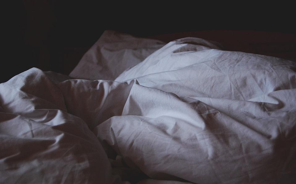 Les punaises de lit